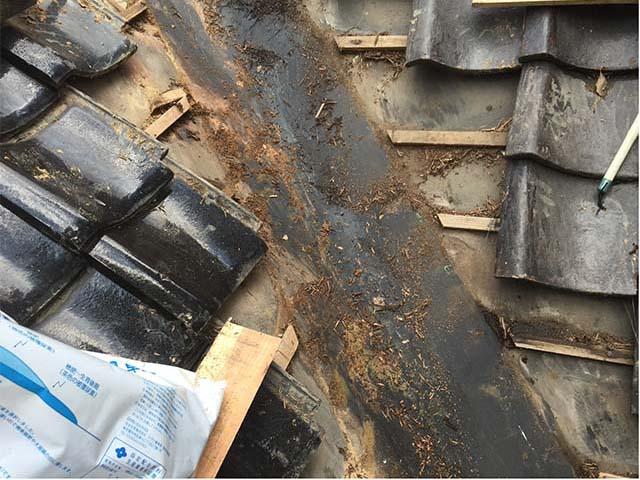 天井壁にシミができた